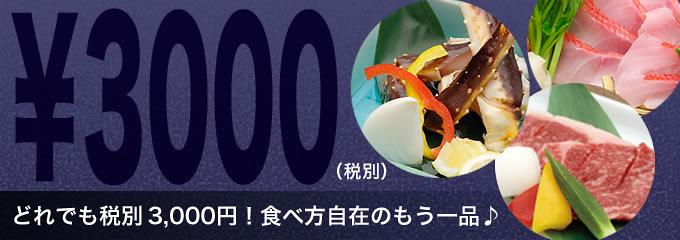 3000円(税別)追加料理