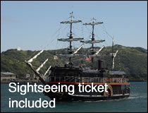 Sightseeing ticket included