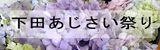 下田あじさい祭り