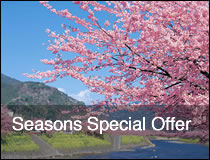 Seasons Special Offer